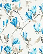 Magnolia, Blue