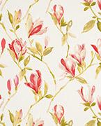 Magnolia, Cream/red