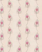 Faccini, Pink