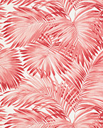 Palmae, Pink