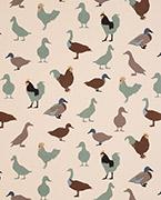 Cock-a-leekie, Duck egg