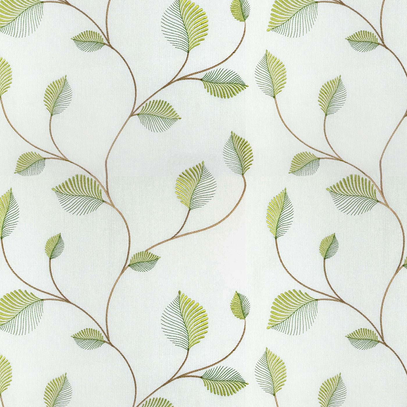 Birch Lime