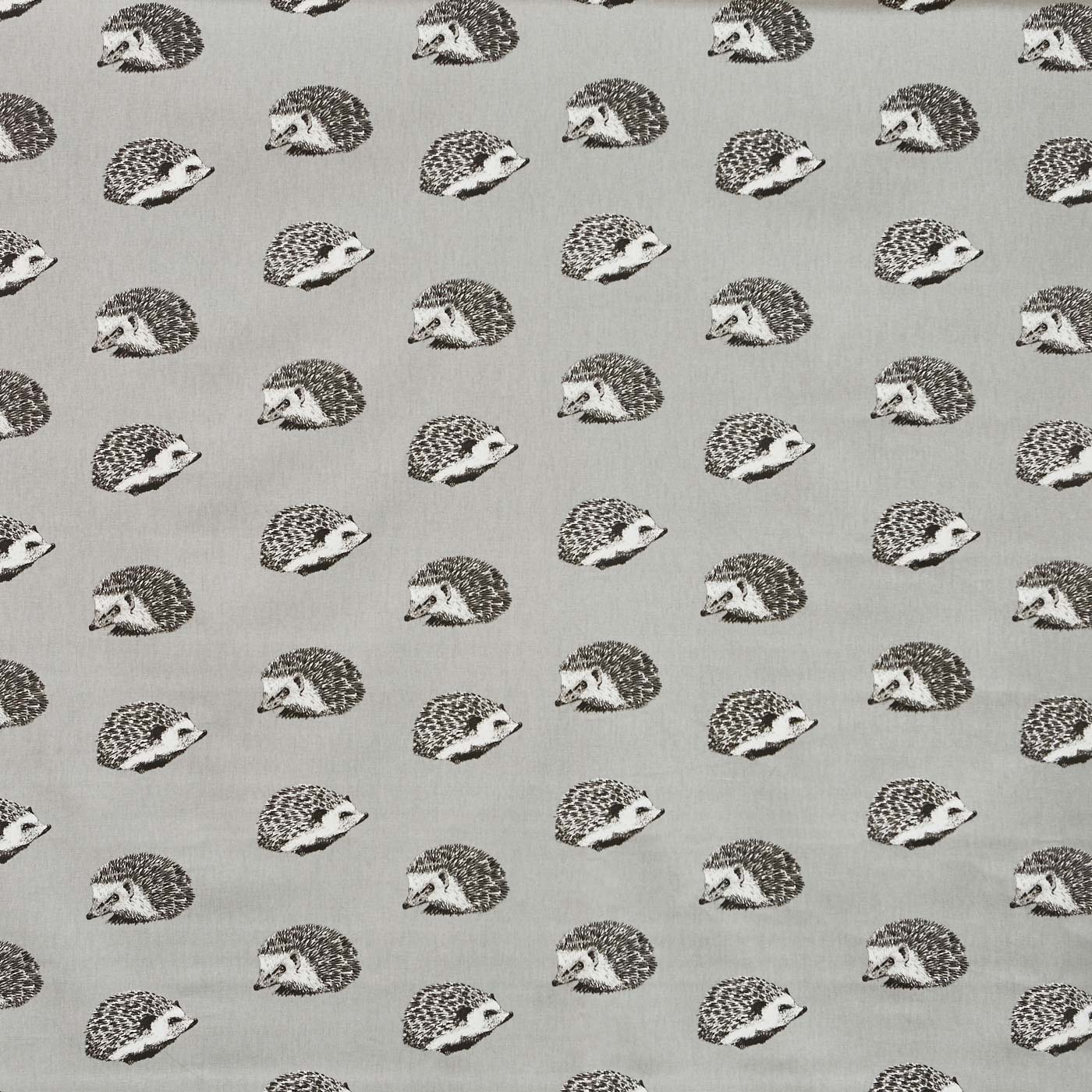 Hedgehog Flint