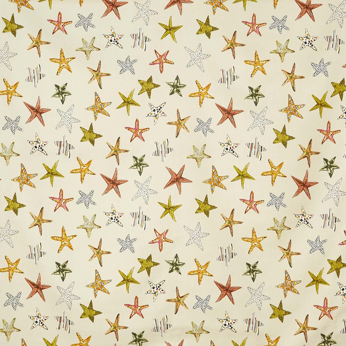 Starfish Sand