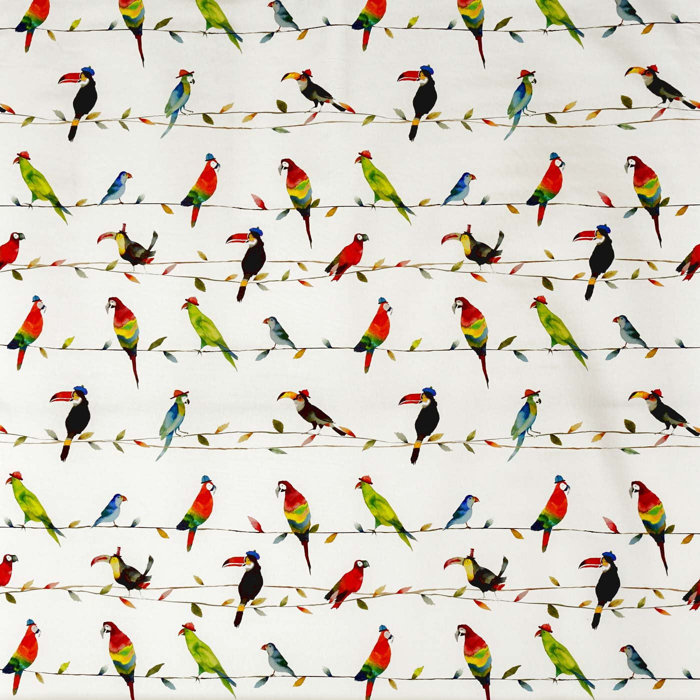 Toucan Talk Paintbox