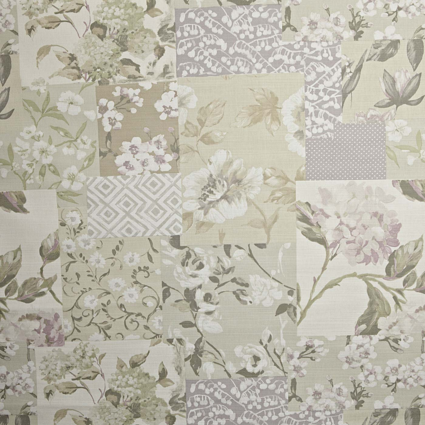 Whitewell Hydrangea