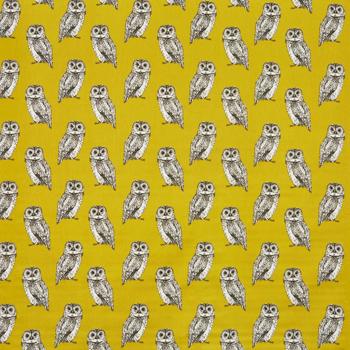 Owl Saffron