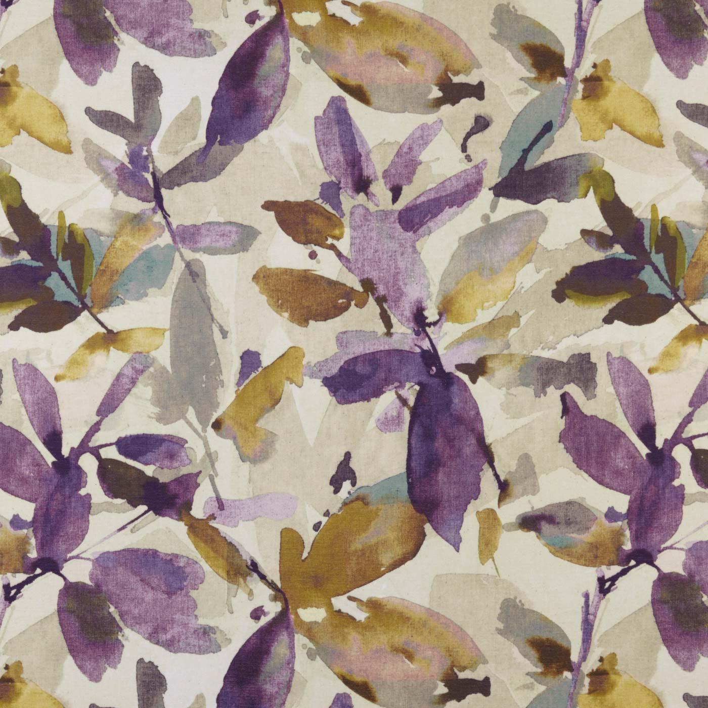 Azzuro Orchid