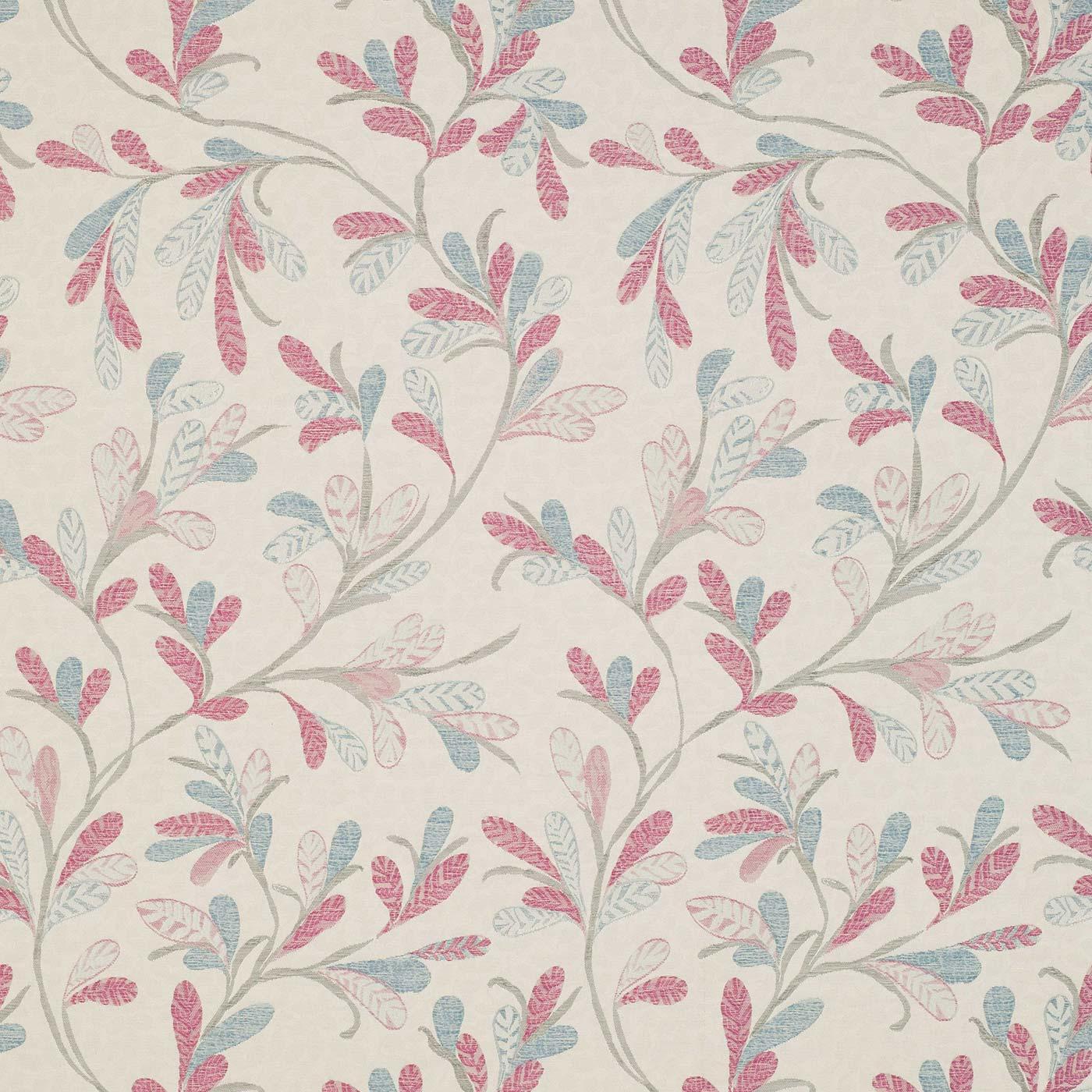 Hobart Fuchsia