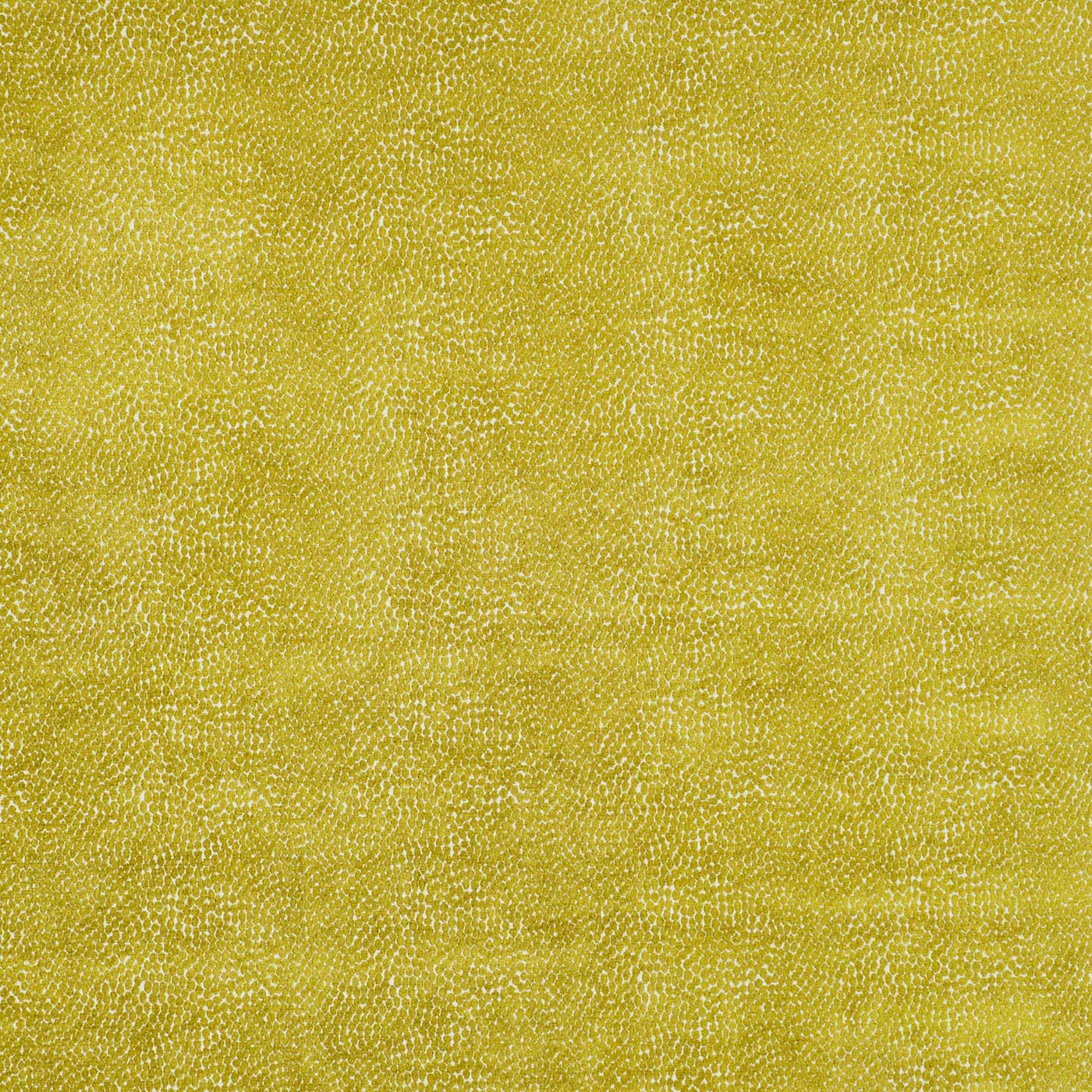Pebble Mustard - Sample - VOPE09
