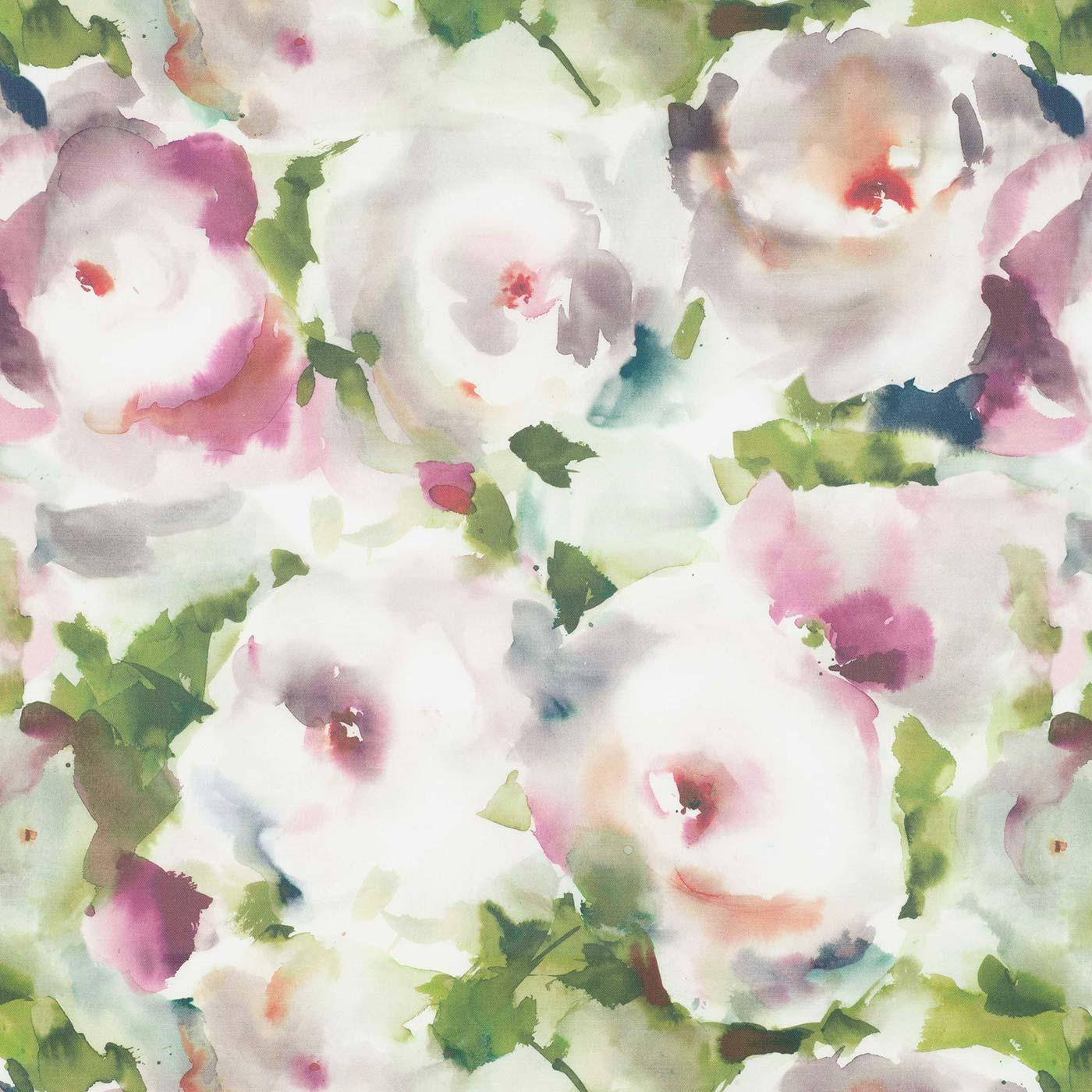 Rosa Spring