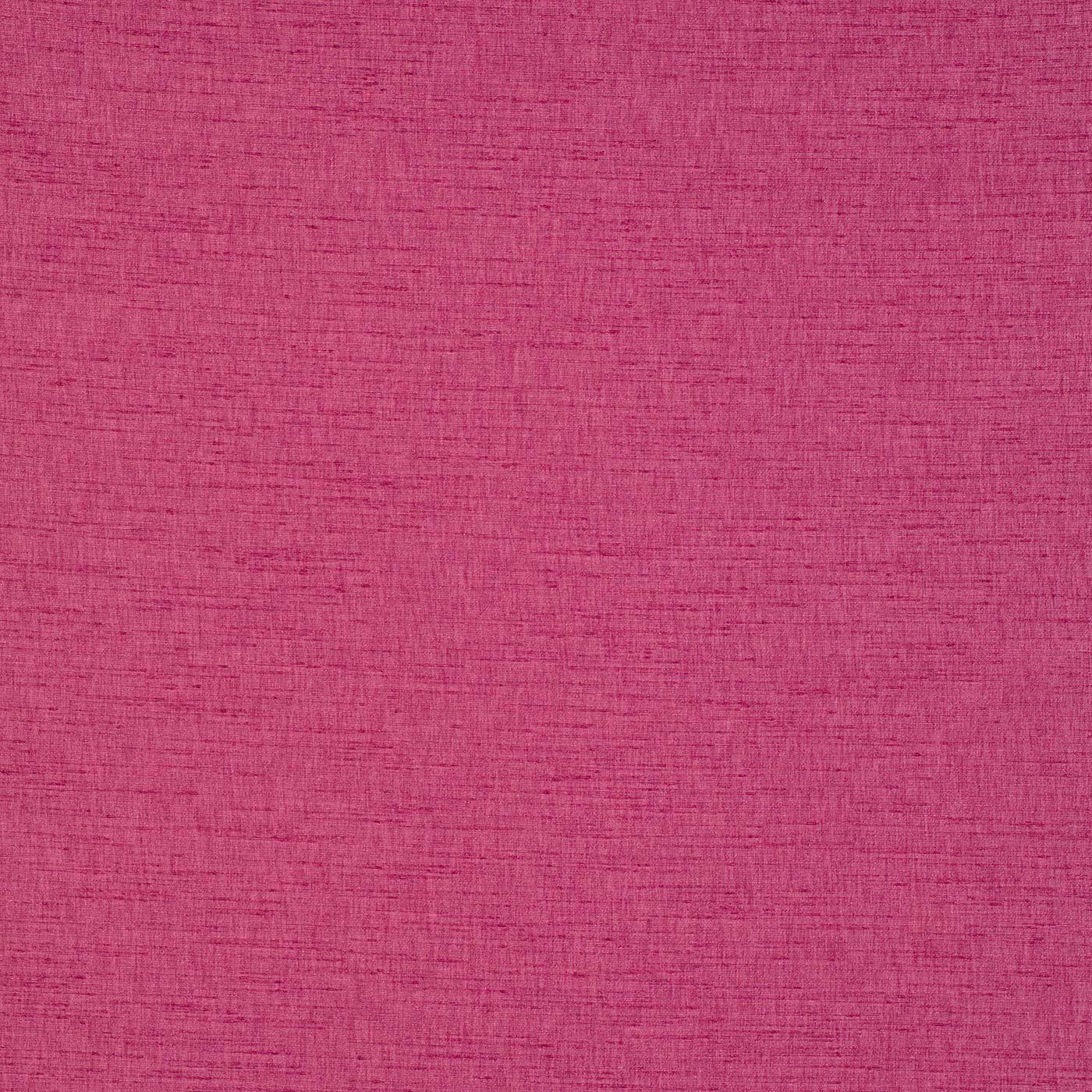 Varanasi Raspberry